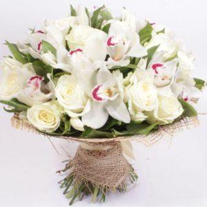 Din Orhidee